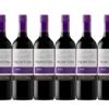 Frontera 远山 梅洛红葡萄酒 750ml*6瓶