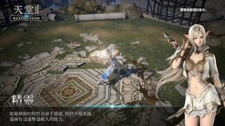 《天堂2》PC数字版游戏