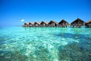 马尔代夫 丽世岛