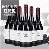 Concha y Toro 干露 红魔鬼 黑皮诺红葡萄酒 750ml*6瓶