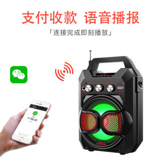 HYUNDAI 现代影音 蓝牙音箱 便携式手提 TR-K88 (红色)