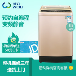 威力8.5公斤全自动变频波轮洗衣机 静音洗 DD变频电机 一级能效 自编程序 羊毛洗 XQB85-1679D