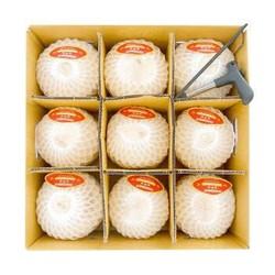 苏洪鲜食 泰国椰青 9个装  椰子大果 椰青一箱(9个) *3件+凑单品