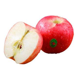 京东生鲜 精品红富士苹果 12个