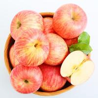 京觅 烟台红富士苹果 12个 净重2.6kg以上 单果190-240g *6件