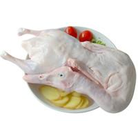 CP正大 樱桃谷鸭 1.4kg 鸭子肉白条鸭北京鸭汉鸭 煲鸭汤烤鸭食材 *12件