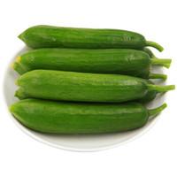 GREENSEER 荷兰黄瓜 小青瓜 水果黄瓜 小黄瓜 约600g 生吃沙拉 产地直供 新鲜蔬菜