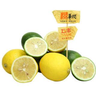 黄柠檬青柠檬 4粒双享装 新鲜水果
