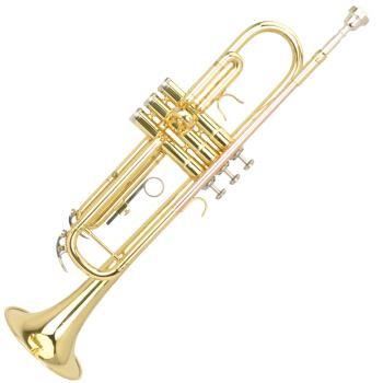 MIDWAY 美德威 专业入门MTR-H3小号乐器 入门降B调小号(磷铜吹杆 双色小号 )