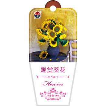 DS 北京东升种业 花卉种子 观赏葵花 20粒