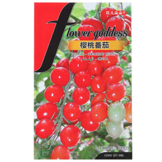 花儿朵朵 蔬菜种子 樱桃番茄 50粒