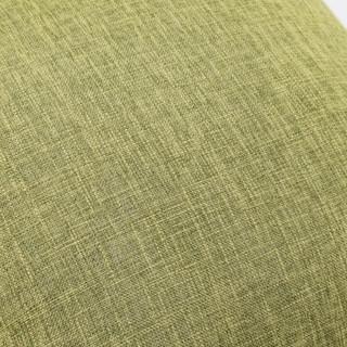 FOOJO 富居 时尚素色抱枕 绿色 45*45cm