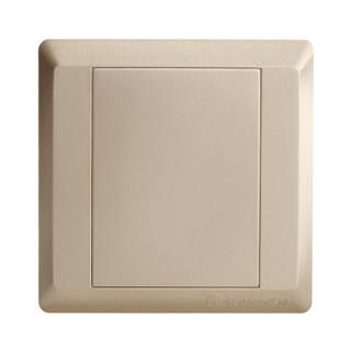 飞雕(FEIDIAO)高端开关插座面板 空雅白面板 插座盖板空面板雅白盖板 盖线盒 86型出色金