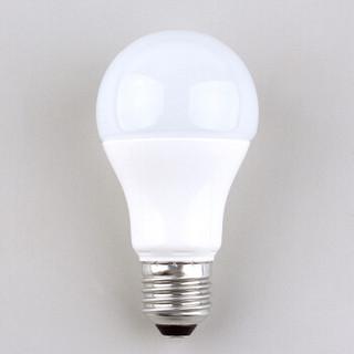 FSL 佛山照明 LED球泡 E27大口 日光色 5W*10支