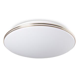 达伦(DALEN) LED吸顶灯卧室灯具客厅灯饰三色灯 现代简约过道灯 过道玄关阳台灯 DL-C202  24W *2件