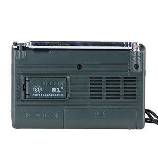 TECSUN 德生 R9701 收音机 (黑色)