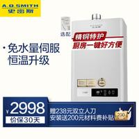 A.O.SMITH  史密斯 JSQ26-VDA1  13升 燃气热水器 (天然气)