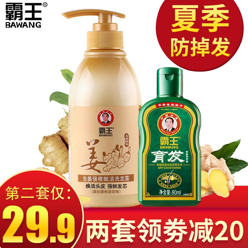BAWANG 霸王 生姜洗护套装(洗发水450g+育发液80g)