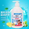 Romar 克林汉 日本孕妇洗手液 500ml