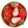 红颜奶油草莓 约重500g/20-24颗 新鲜水果