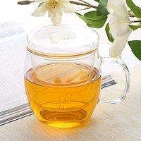 凤朗 BZ-05 玻璃茶杯 三件式 500ml