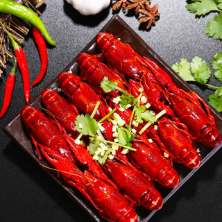 Sinoon Union 星农联合 红小厨 小龙虾 (麻辣、17-25只 净虾1斤)
