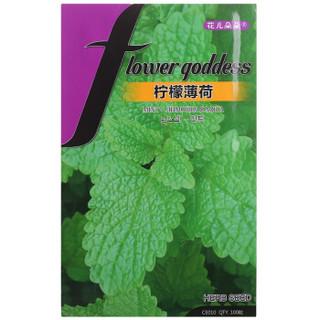 花儿朵朵 柠檬薄荷 绿色 香草种子 100粒/袋 *2件