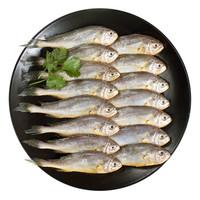 海名威 冷冻东海小黄鱼 500g *7件