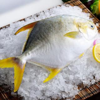 GUOLIAN 国联 金鲳鱼 (700g)