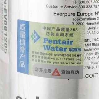 EVERPURE 爱惠浦 4FC-S型 净水器替换滤芯