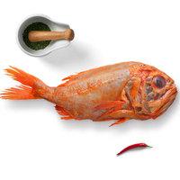 海买 南极长寿鱼 1.2kg