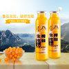吕梁野山坡 沙棘汁 (16瓶装)