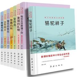 《青少年阅读文学经典系列》8册
