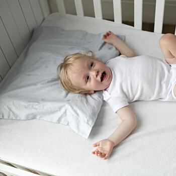 FOSSFLAKES 婴儿枕套 (浅蓝色、40*45cm)