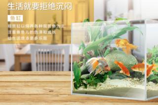 聚宝源 超白玻璃鱼缸 JKL320缸+底座 32*24*27cm