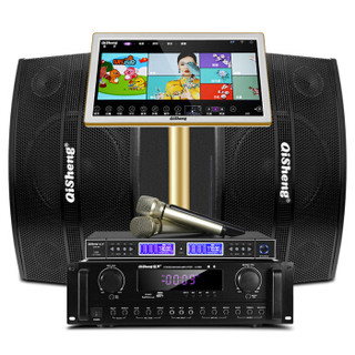 奇声(QISHENG)QS-6点歌机家庭影院ktv音响组合功放套装家用卡拉OK双系统一体机10英寸低音(1T版点歌机)