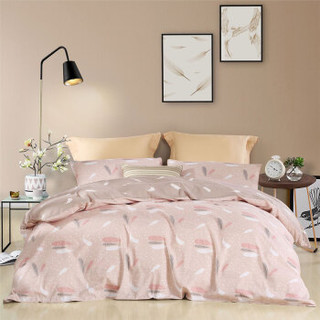 水星家纺出品 百丽丝 磨毛印花四件套 时尚床单被套 飞舞翩翩 双人 1.8米床 220*240cm