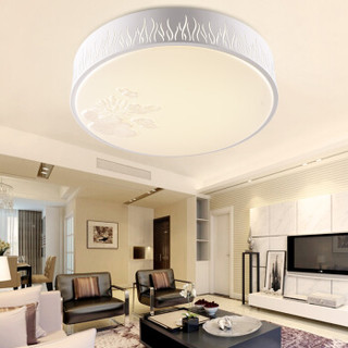 雷士(NVC)现代简约 LED卧室吸顶灯客厅餐厅书房灯灯具 18W双色调光 适用10-15平