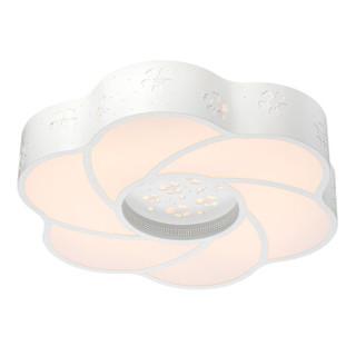 nvc-lighting 雷士照明 LED卧室灯灯具 吸顶灯餐吊书房灯具灯饰现代简约个性灯 24瓦 带遥控
