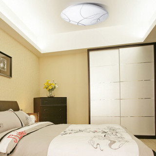 Cnlight 雪莱特 雨花石 16W LED吸顶灯 正白光