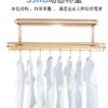Jeyang 捷阳 S068 电动升降晾衣架