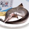 鲜外鲜 舟山新鲜小鲨鱼 约1.3斤 1-2条 58元