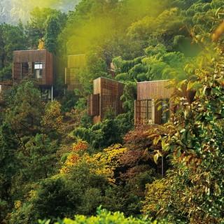 酒店特惠 : 可选森林树屋+无限次山野温泉!溧阳美岕山野温泉度假村1晚套餐