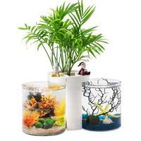 奇溢自然 桌面鱼缸 斗鱼鱼缸 小鱼缸 迷你缸小型鱼缸 玻璃鱼缸 桌面鱼缸 生态鱼缸 BC50双缸 白色