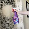 mootaa 墙体壁纸除霉除菌多功能清洁剂 550ml 29元(需用券)