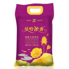太粮 曼哈浓香 泰粮王府香米 5kg