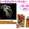 FOLIATEC foriatekkuburekikyariparakkakabongure 4860日元(约299.38元)