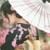 全国多地-日本东京+大阪6-7天跟团游(含签证费+温泉酒店) 4099元起/人