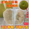 弘果 江永香柚