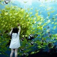 酒店特惠 : 三亚海棠湾天房洲际2晚亲子度假套餐(含早餐+下午茶+儿童游乐场畅游)